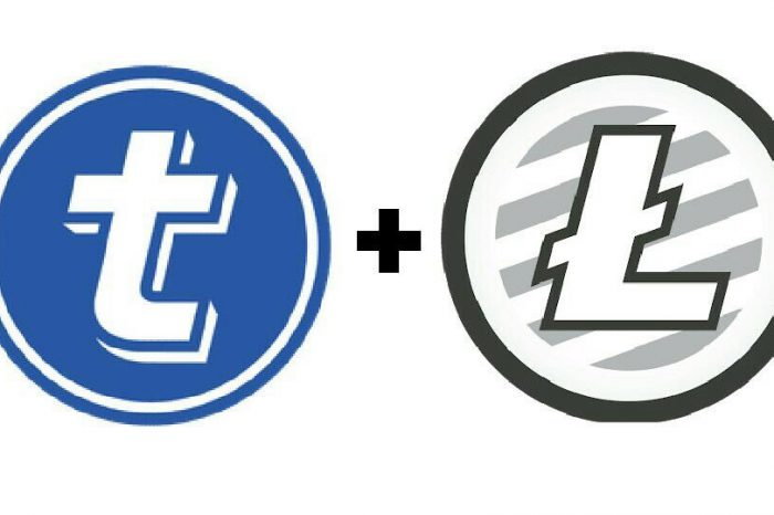 Litecoin Foundation Partners With TokenPay To Buy A Stake In A German Bank