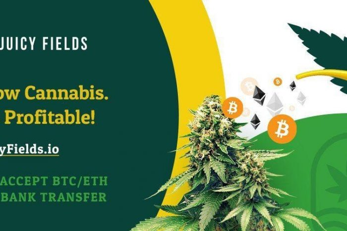 Grow Your Profits with Pioneering Legal Cannabis Crowdgrowing Platform JuicyFields