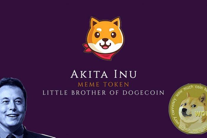 Akita Inu: The Decentralized Meme Currency Building a DEX Community With Polarfox