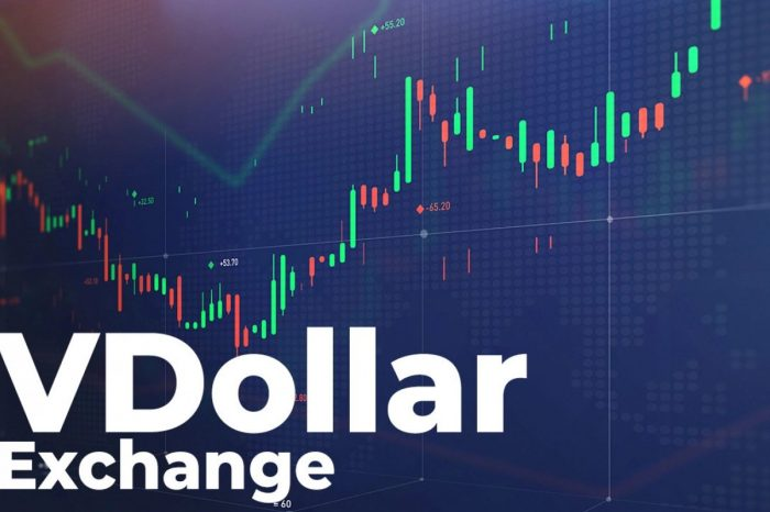Exchange Review: VDollar